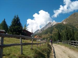Der Weg zur Wodenalm im Zedalcher Paradies